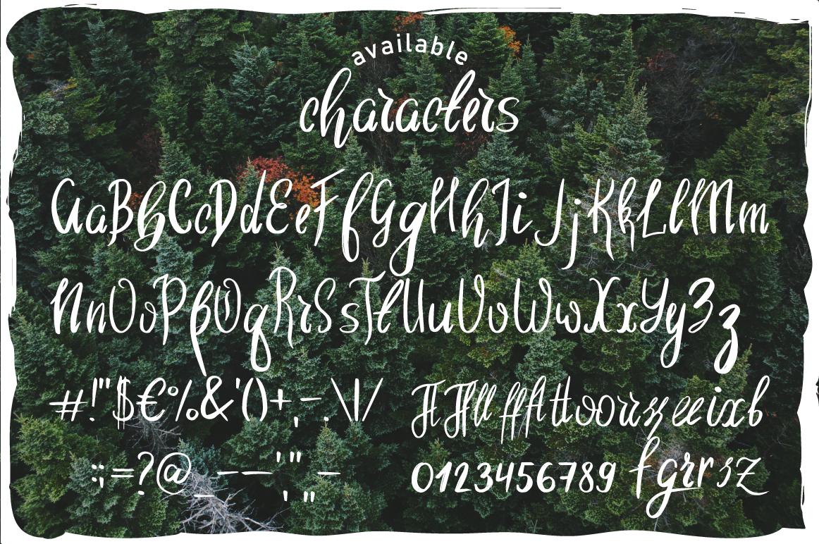Wild Nature Script Typeface example image 3