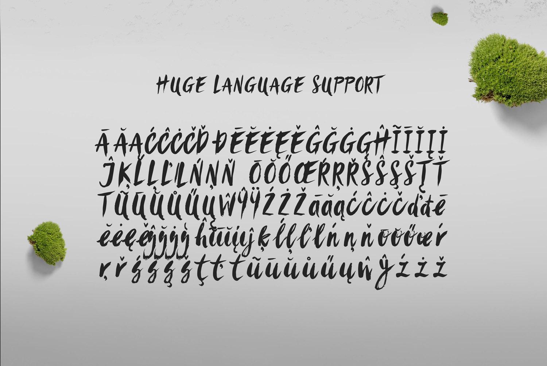 Sanös Extended Script Font example image 9