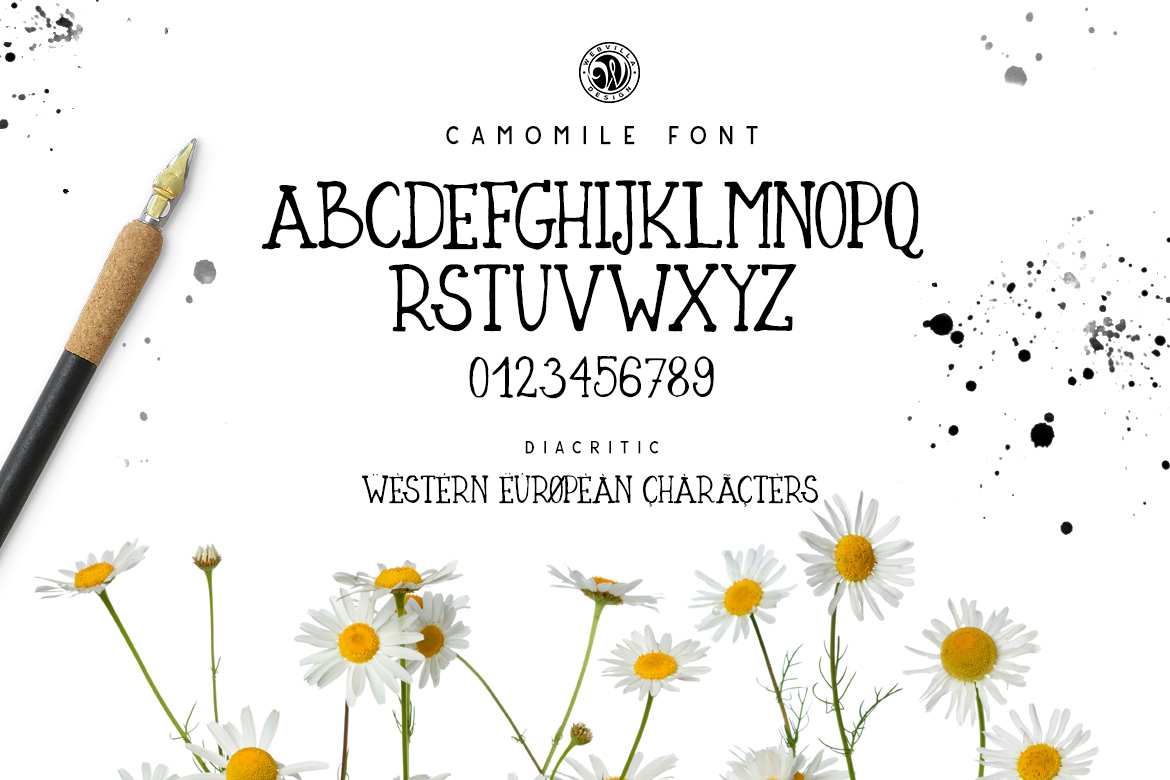 Camomile Font example image 3