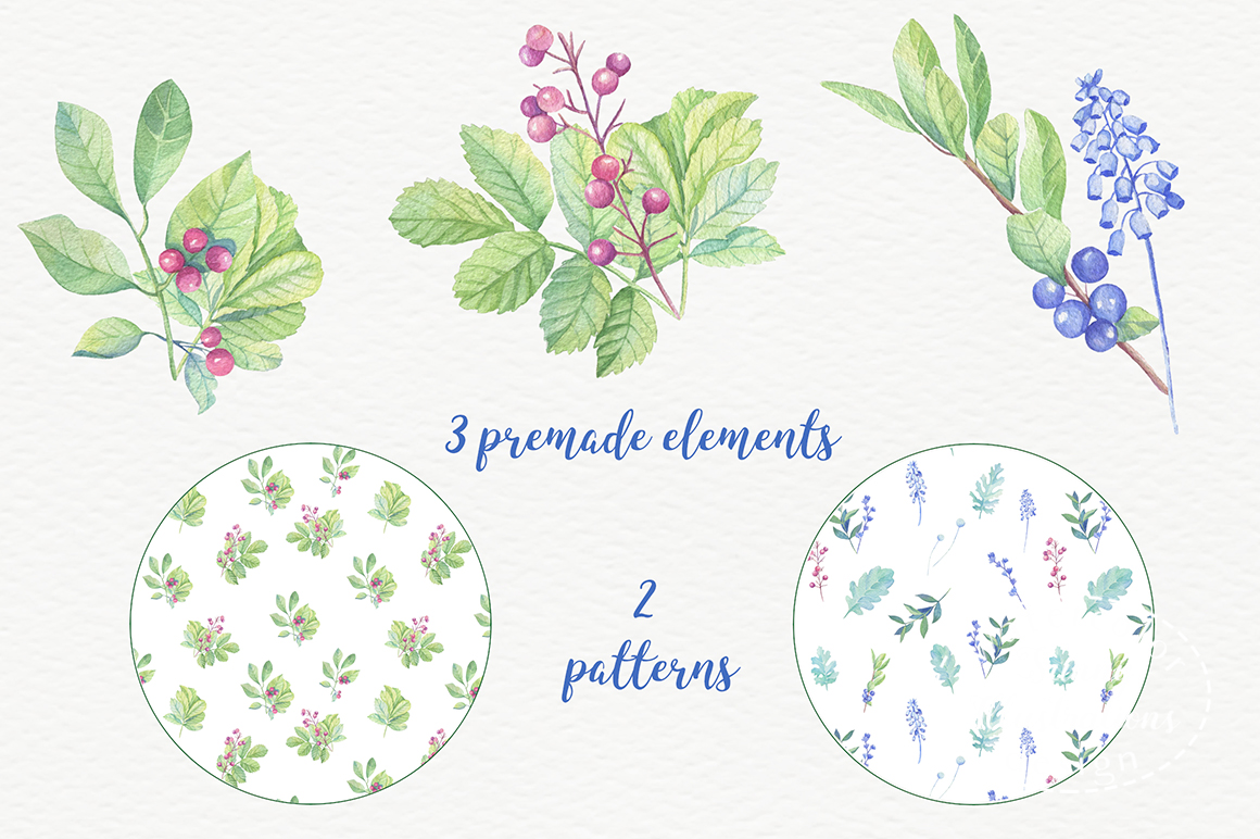 Watercolor leaves, berries, flowers example image 6