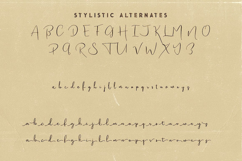 Bettina Script Font example image 6