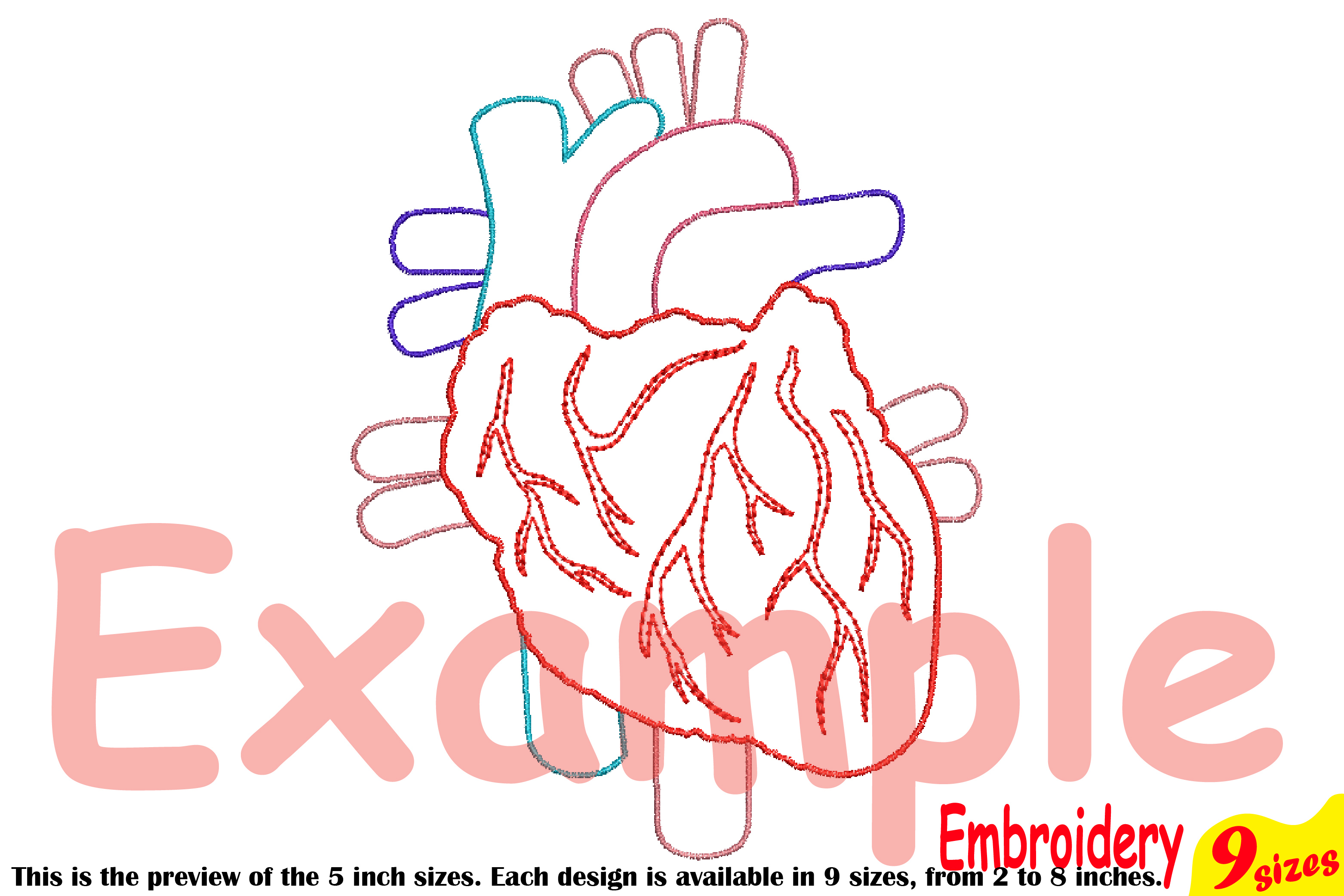 Heart Outline Embroidery Design Machine Instant Download digital file science school hospital biology Medic Organs Anatomy 202b example image 3