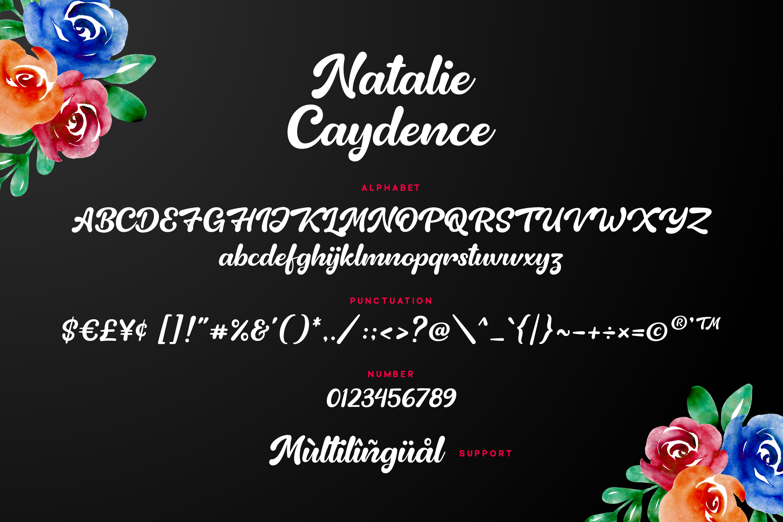 Natalie Caydence - Elegant Script example image 7