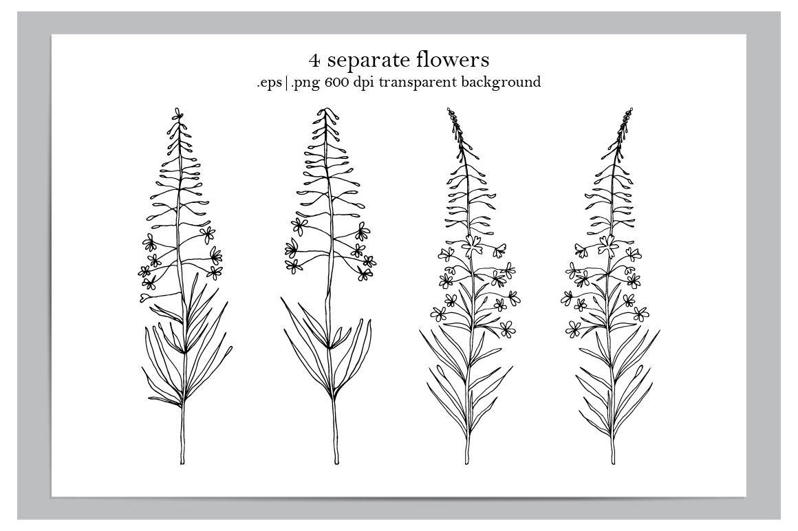Fireweed meadow set example image 6