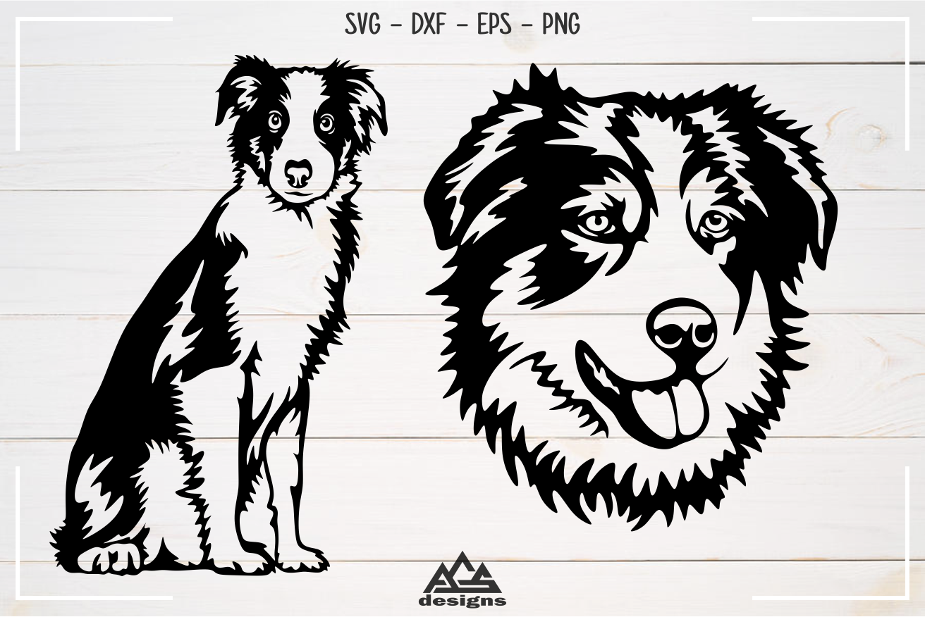 Dog Australian Shepherd Svg Design example image 2
