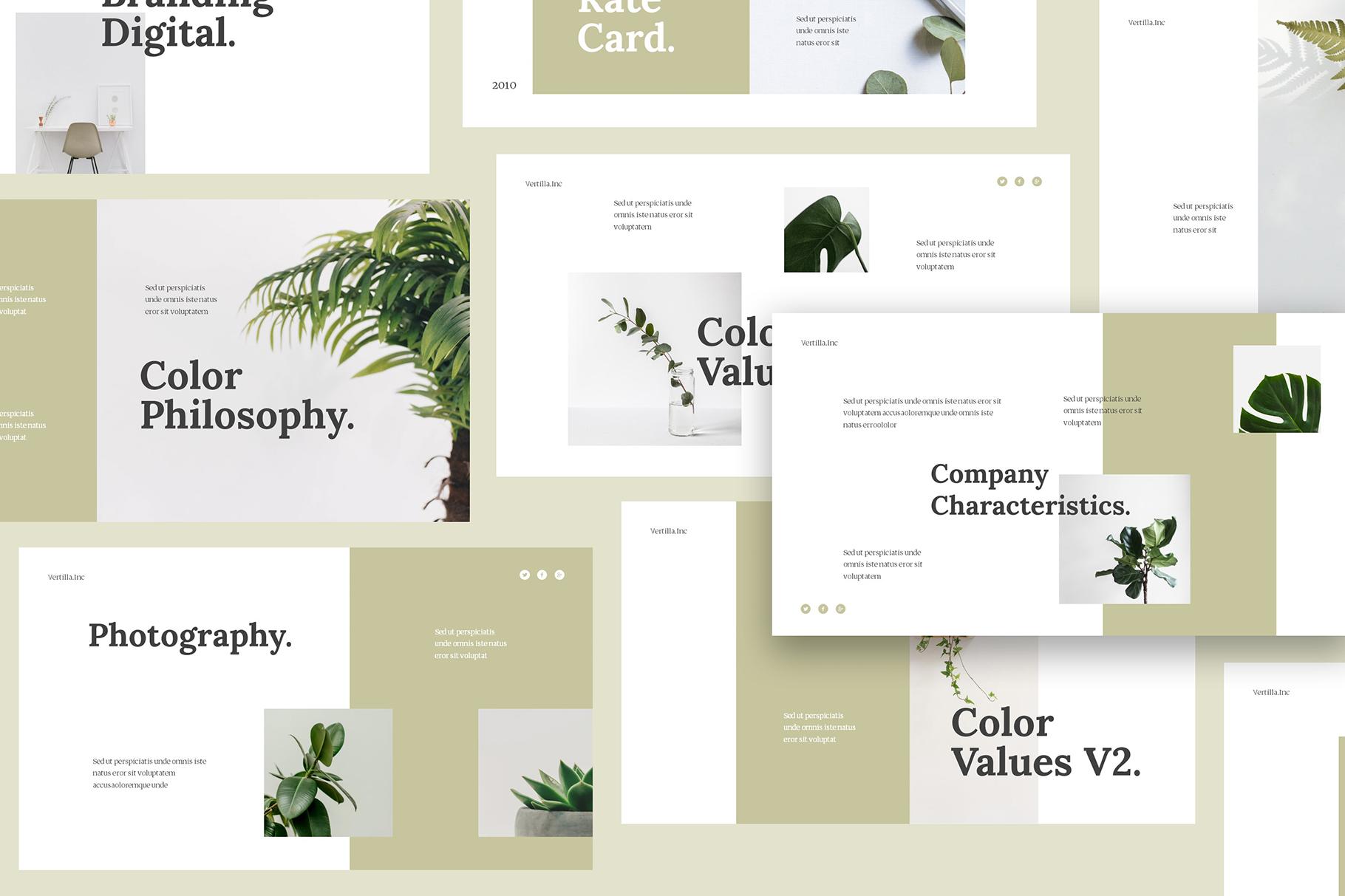 Vertilla-Brand Guideline Keynote example image 3