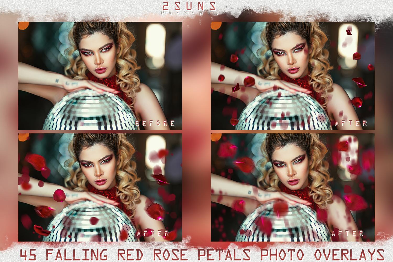 Falling Rose Petals Photo Overlays , Rose Petals, Red Rose example image 2