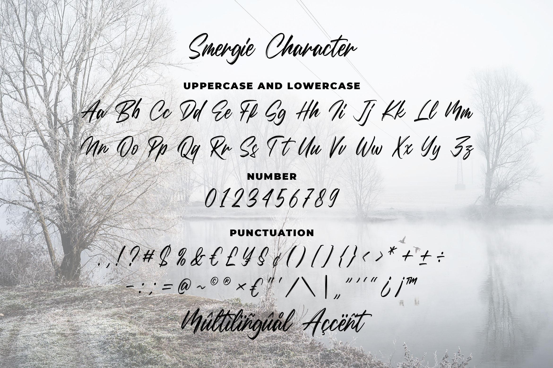 Smergie - Wild Brush Typeface example image 3