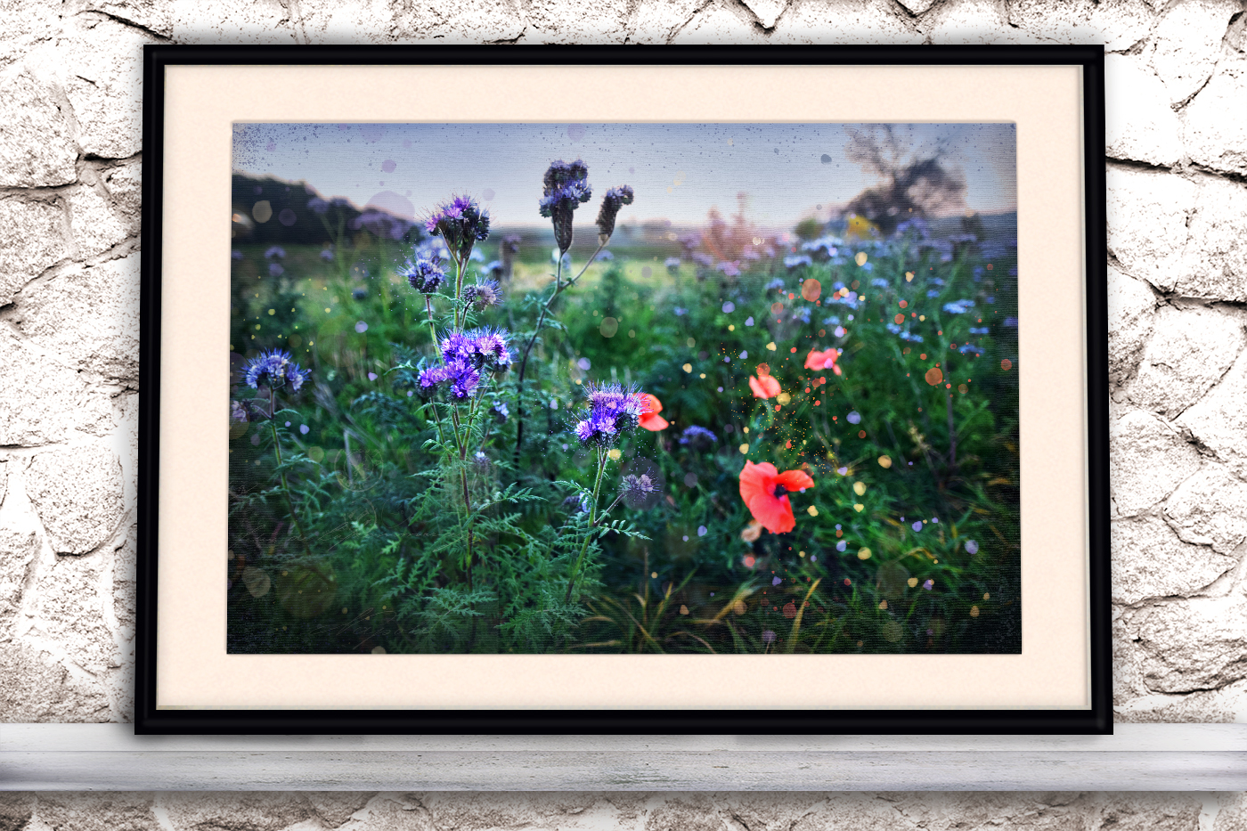 Nature photo, floral photo, summer photo, Wildflowers example image 3