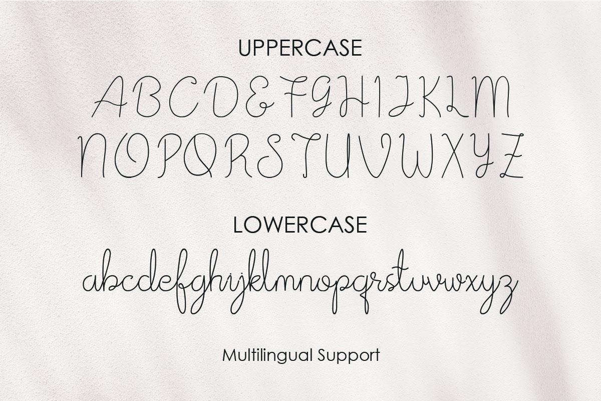 Afrida monoline script font example image 2
