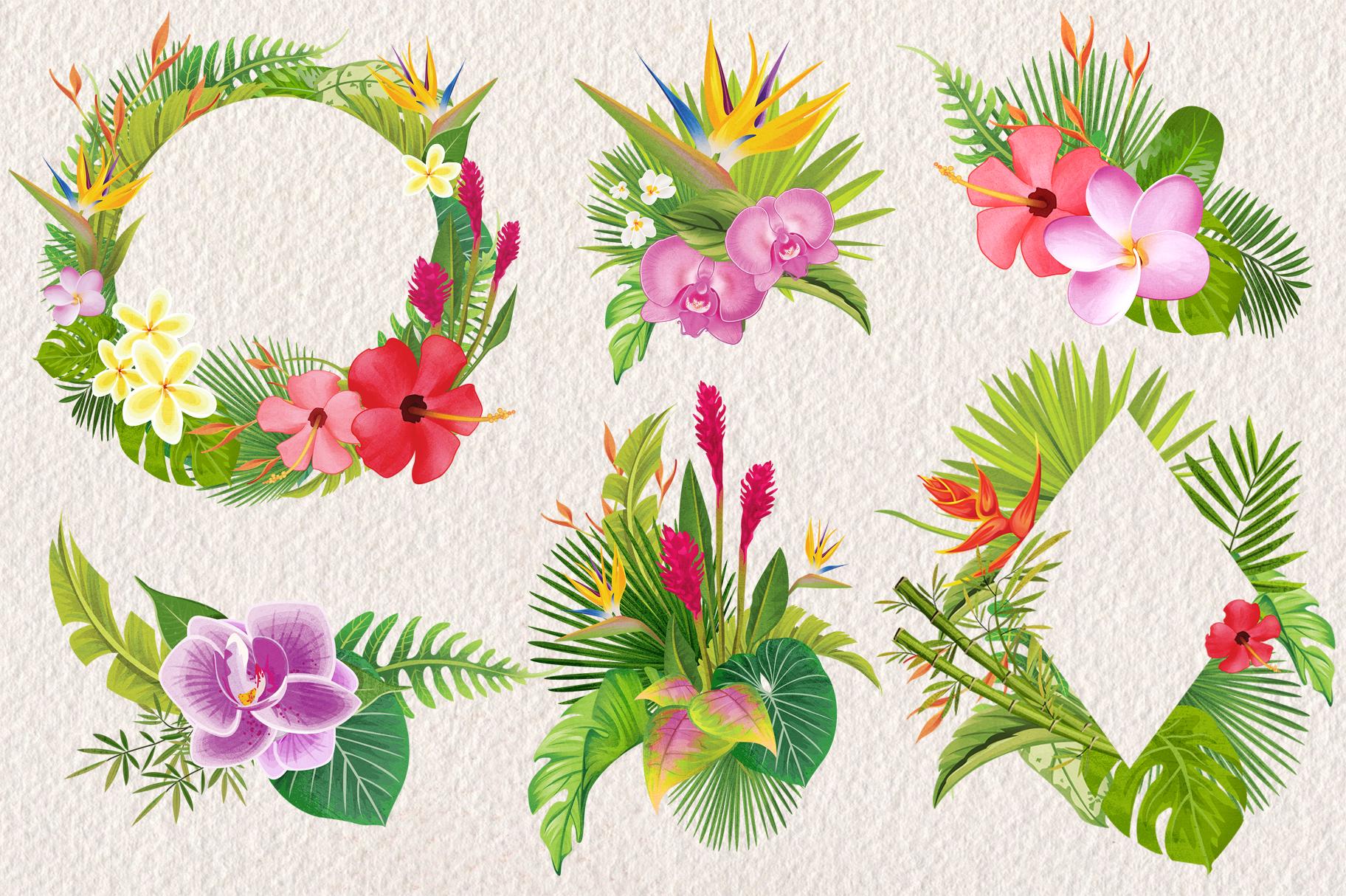 Tropical Floral Plants & Frames Set example image 2