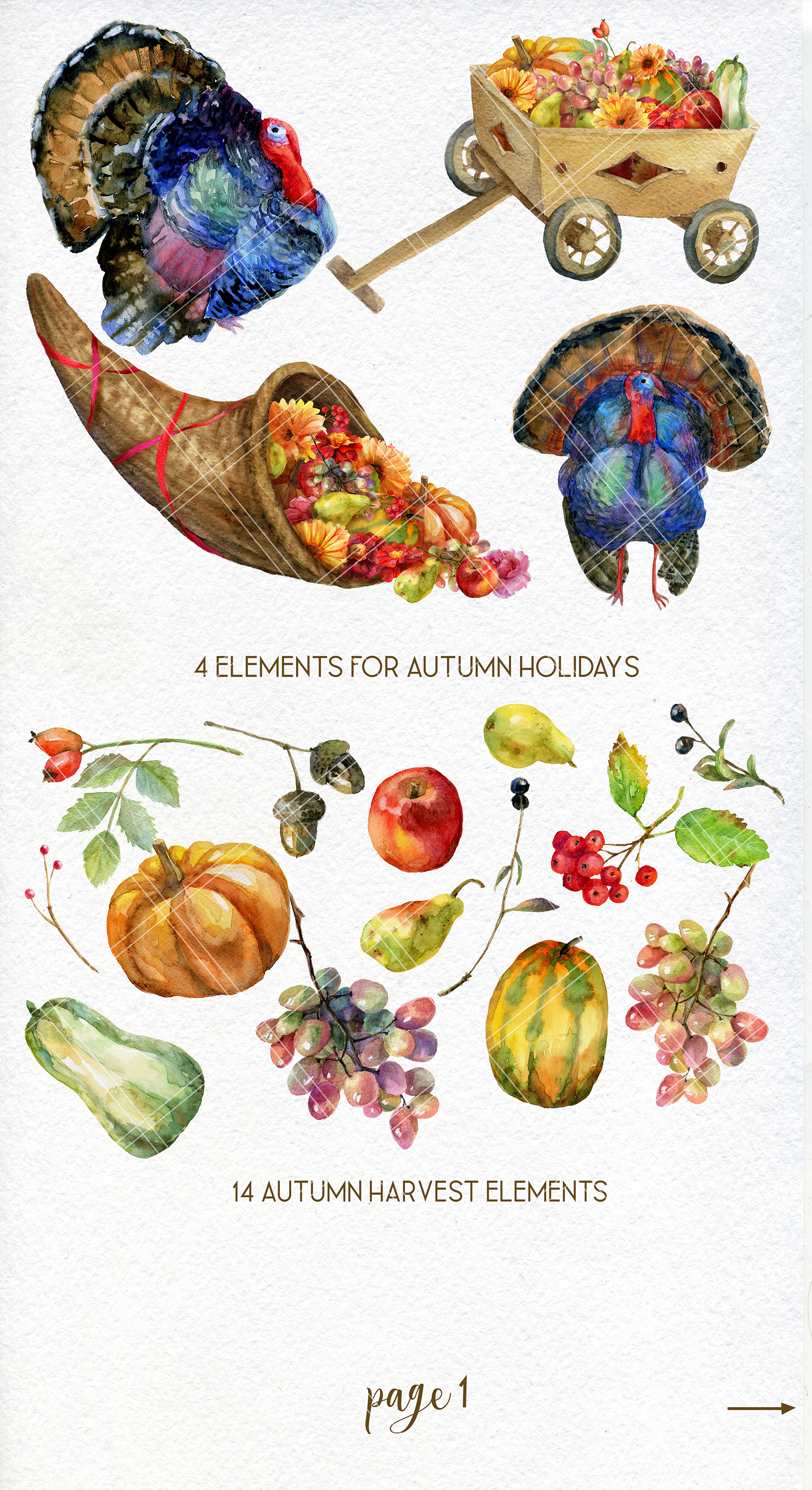 Thanksgiving fall harvest clipart, with cornucopia and turke example image 2