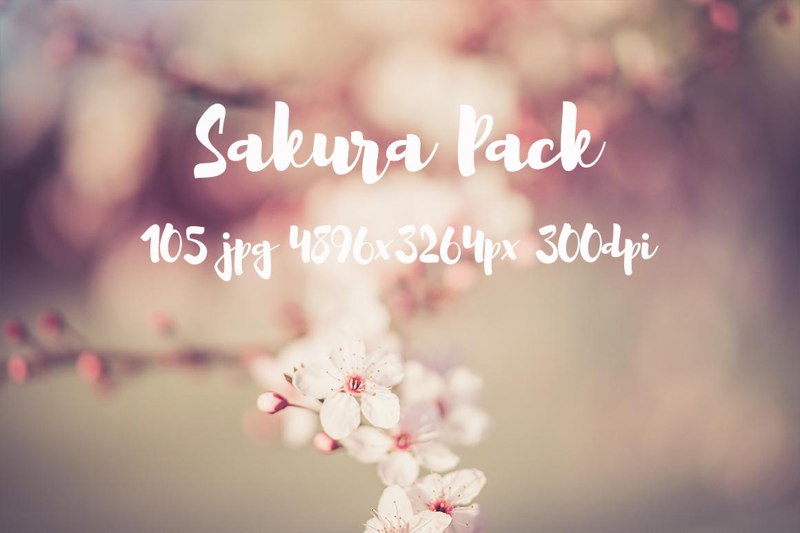 sakura photo pack example image 10
