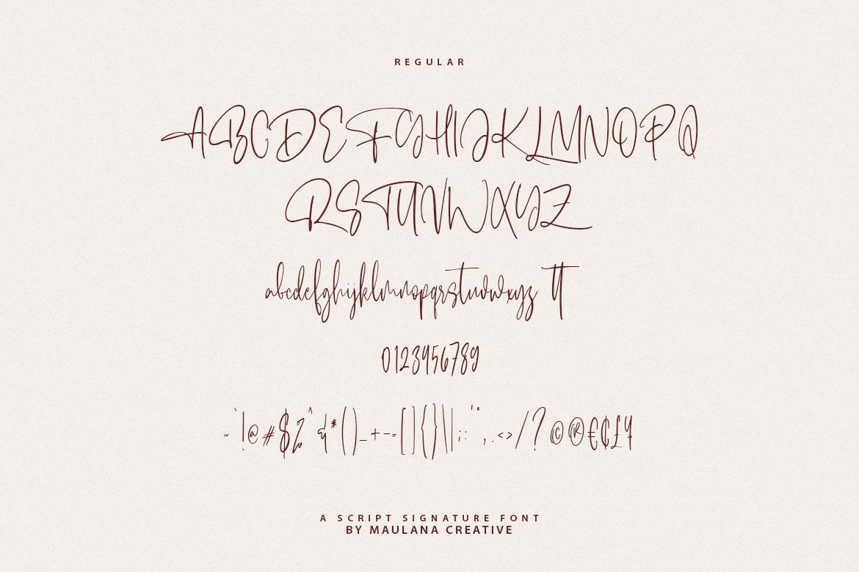 Alentropics Script Signature Font example image 10
