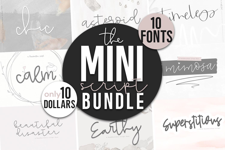 Mini Handwritten Script Font Bundle - 10 Fonts example image 1