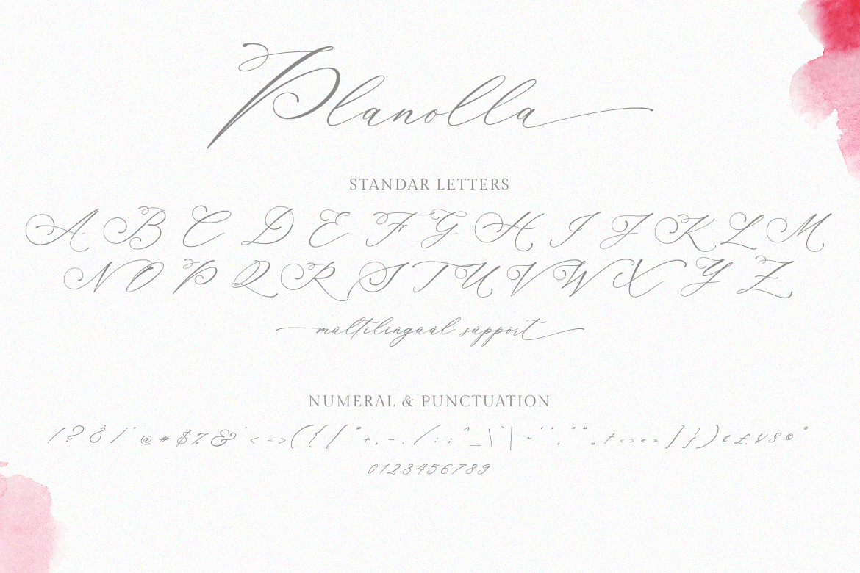 Planolla | Modern Calligraphy example image 9