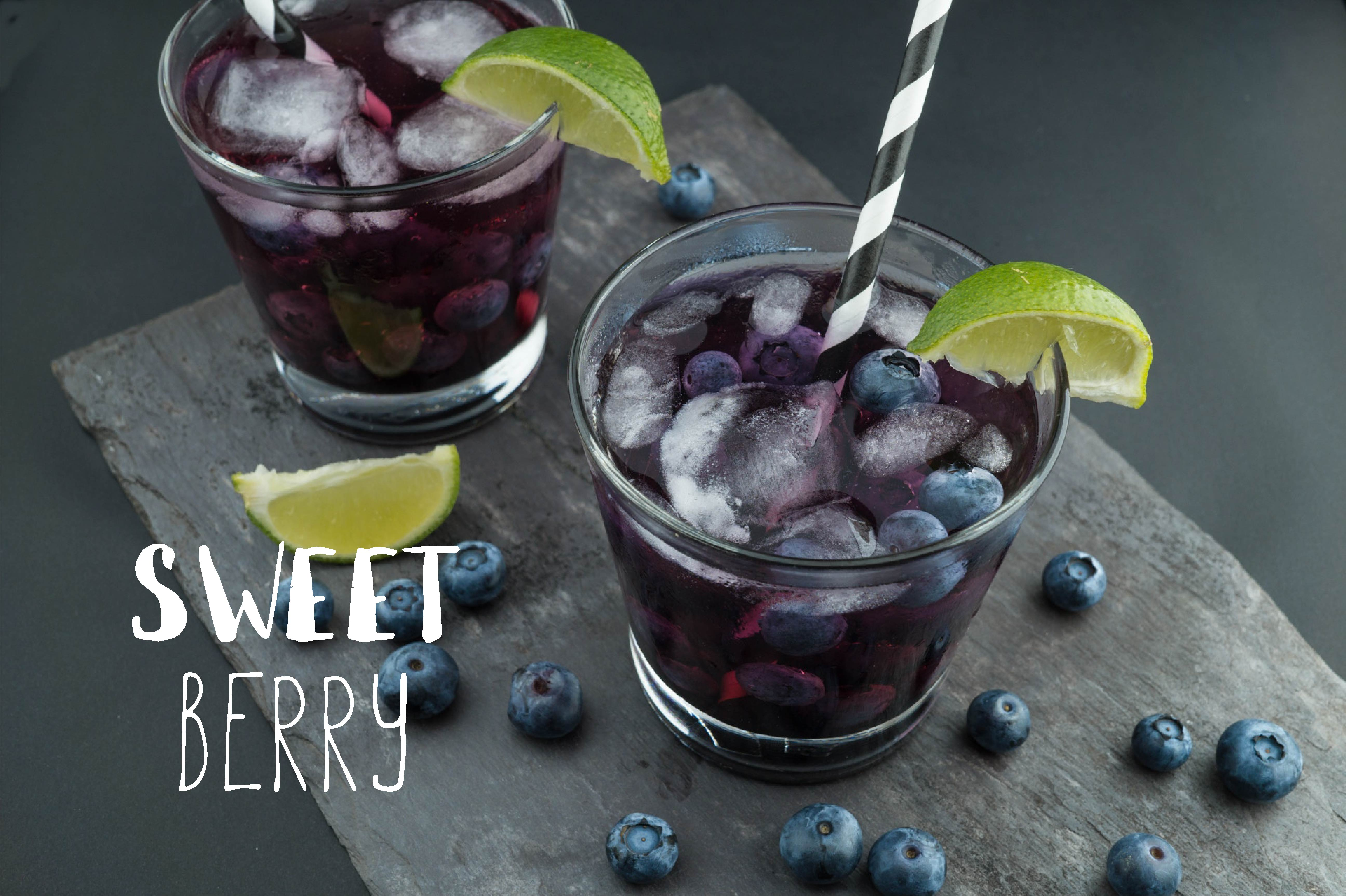 Wild Blueberry Font Duo example image 8