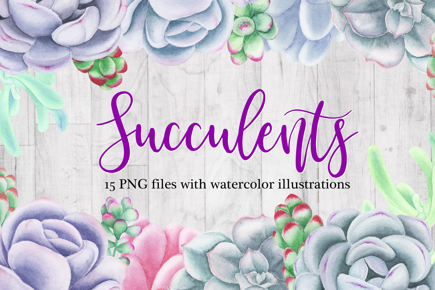 Watercolor Succulents Clipart example image 1