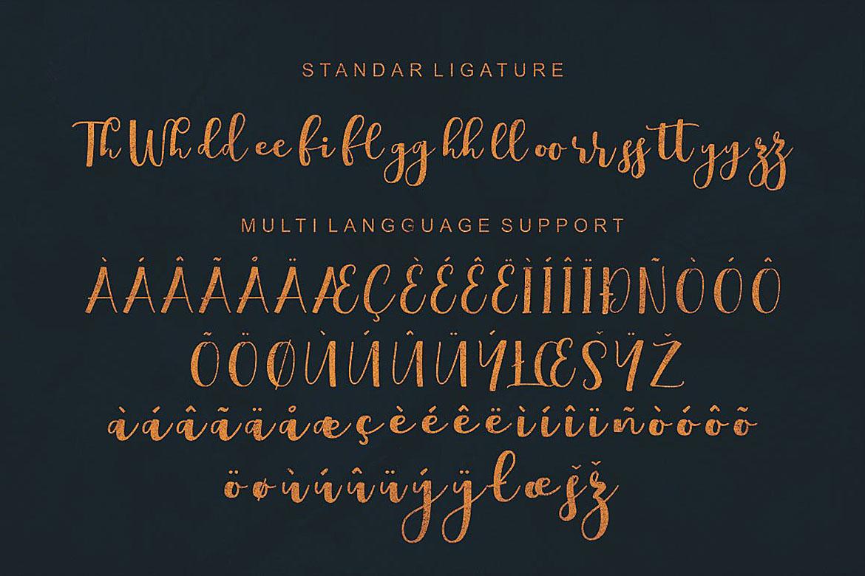 Boulevard Script Font example image 8