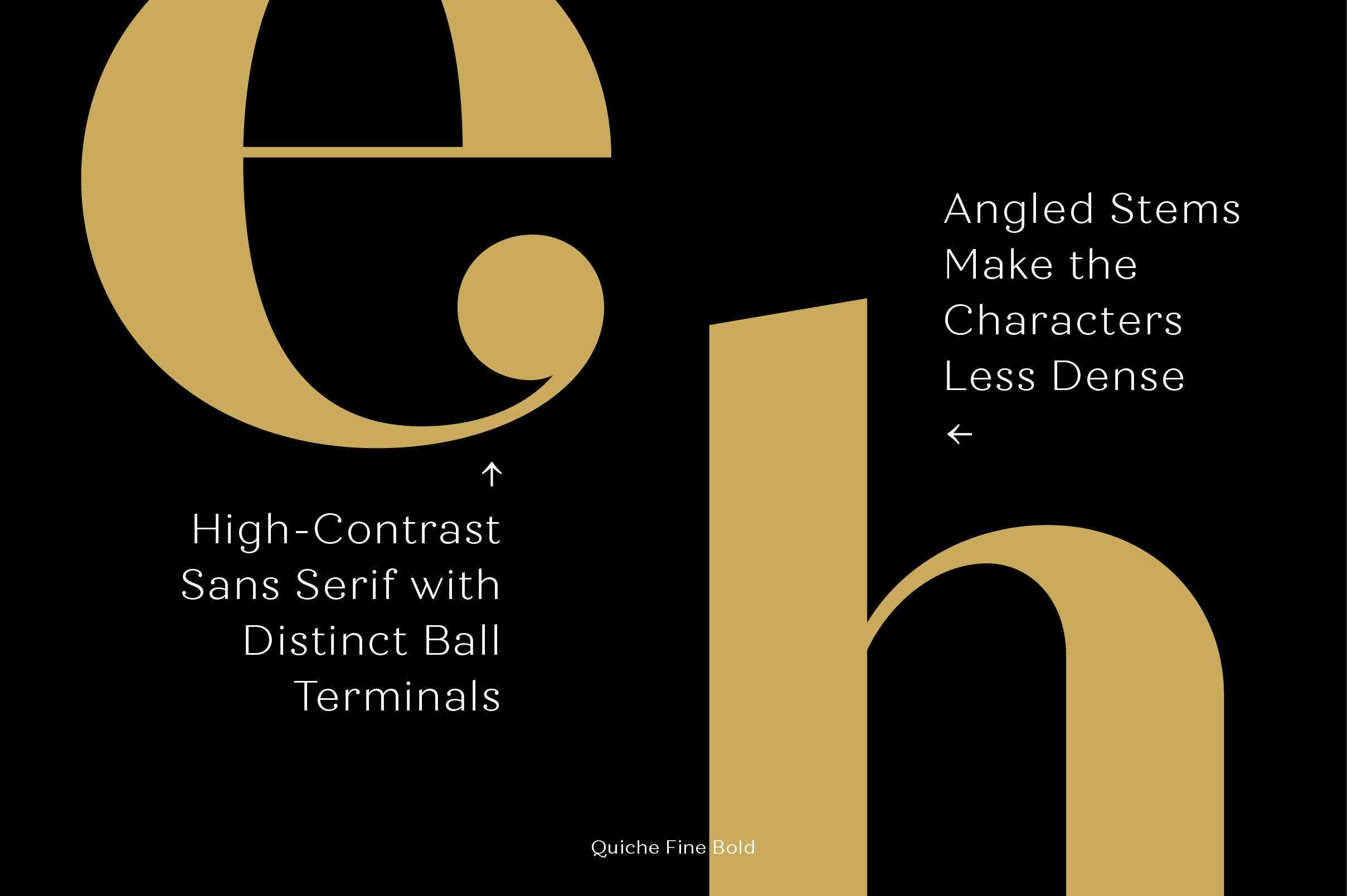 Quiche Font Family example image 10