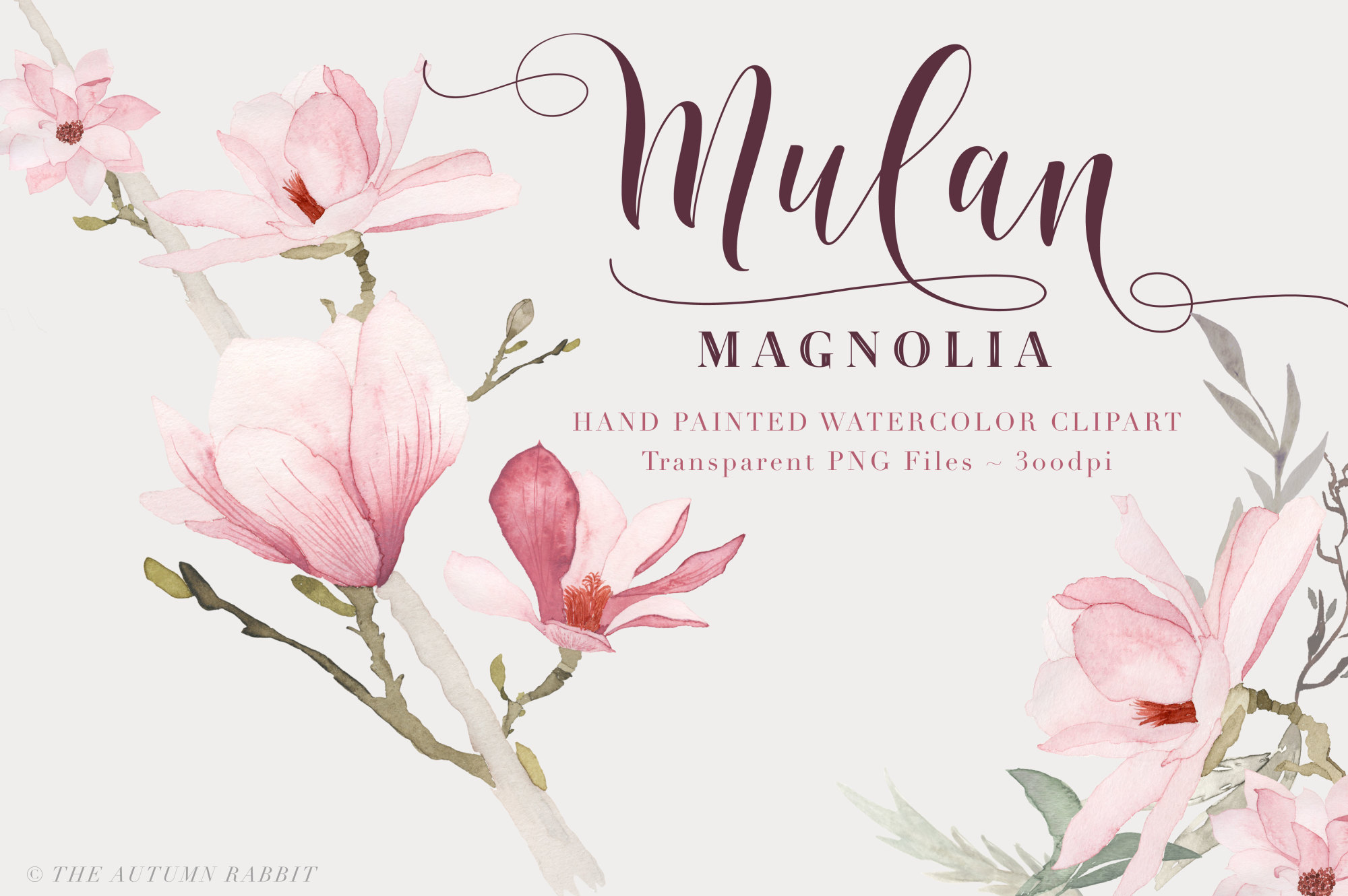 Watercolor Magnolia Floral Clipart example image 1