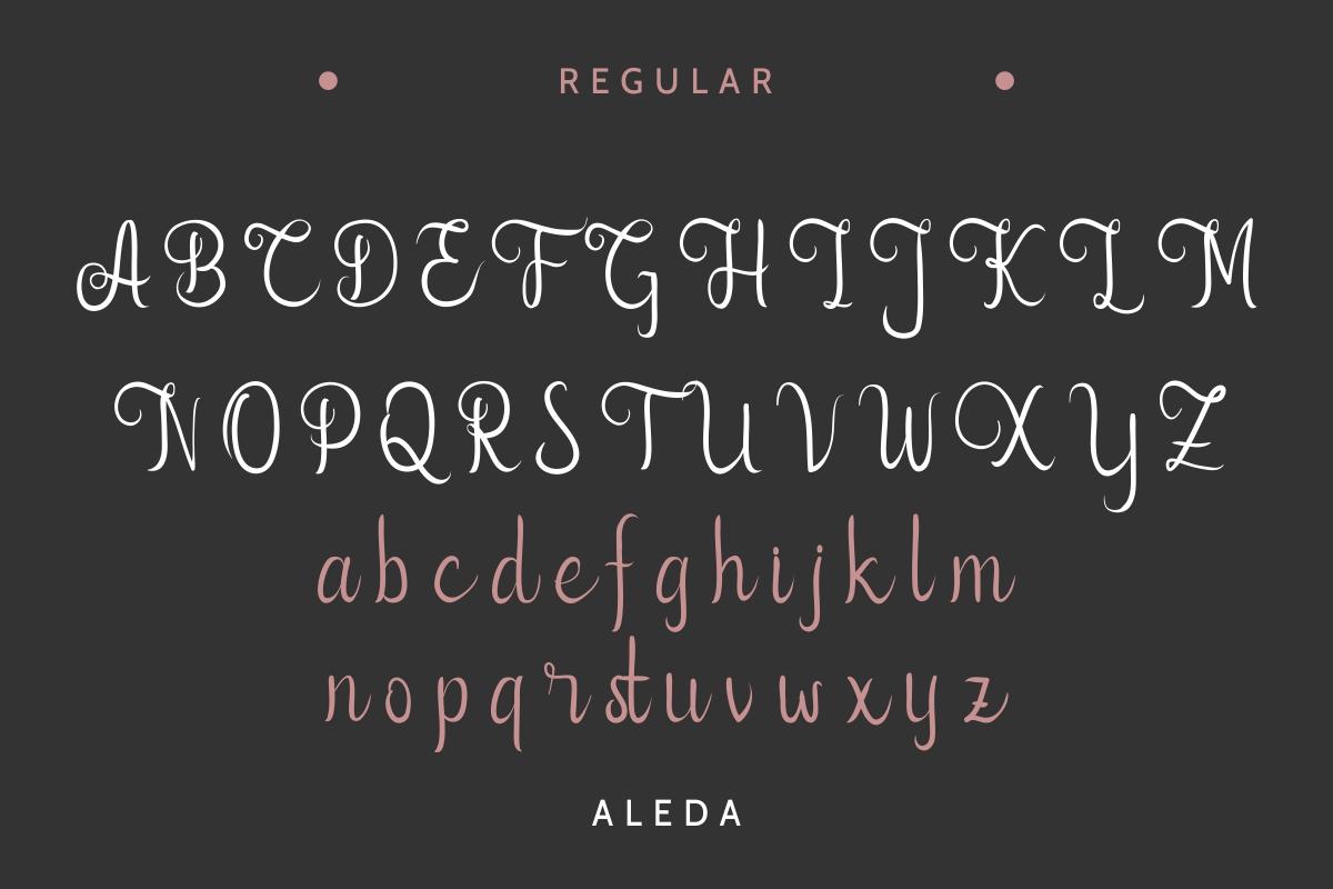 Aleda example image 4