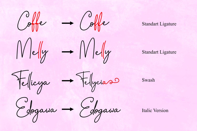 Fellicya Stylish Font example image 4