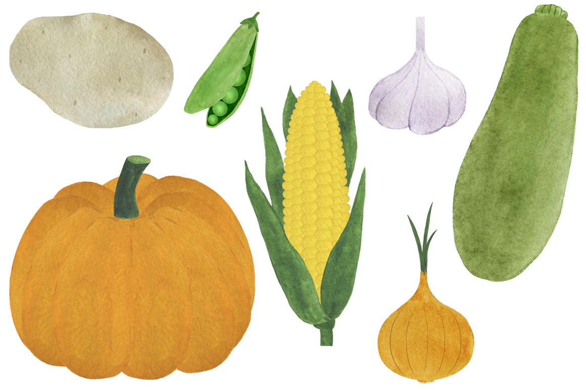 Watercolor vegetables collection example image 4