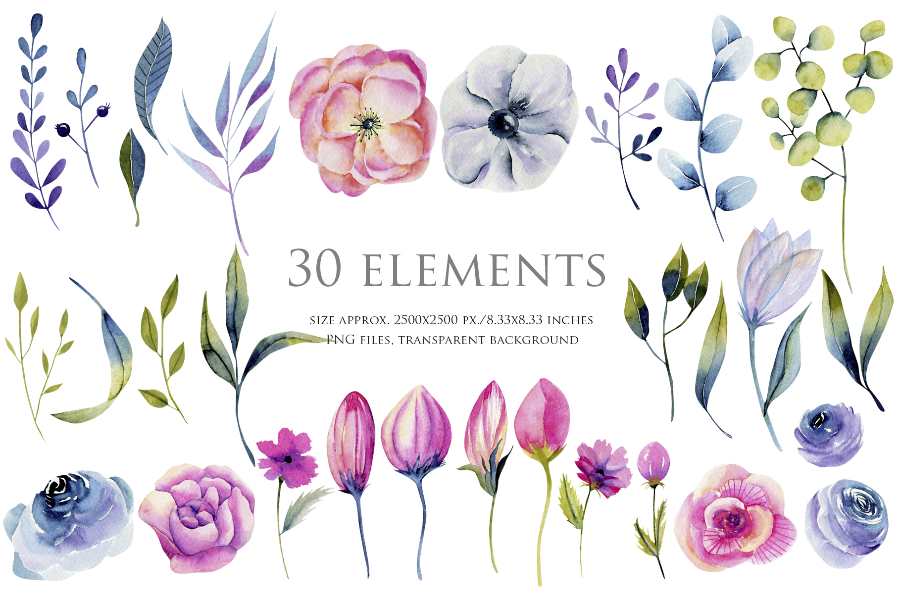 Wyoming flowers. Watercolor clipart. example image 2