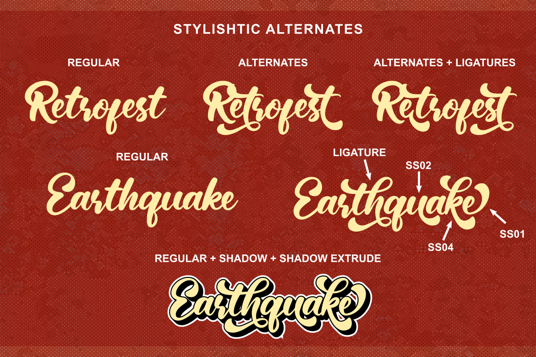 Retrofest example image 3
