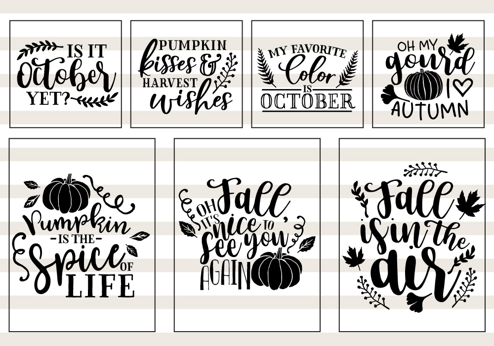 Pumpkin & Fall Quote SVG Cut File Bundle example image 4