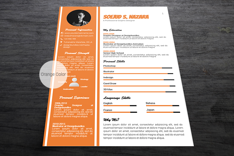 A4 Resume Templates Word example image 5