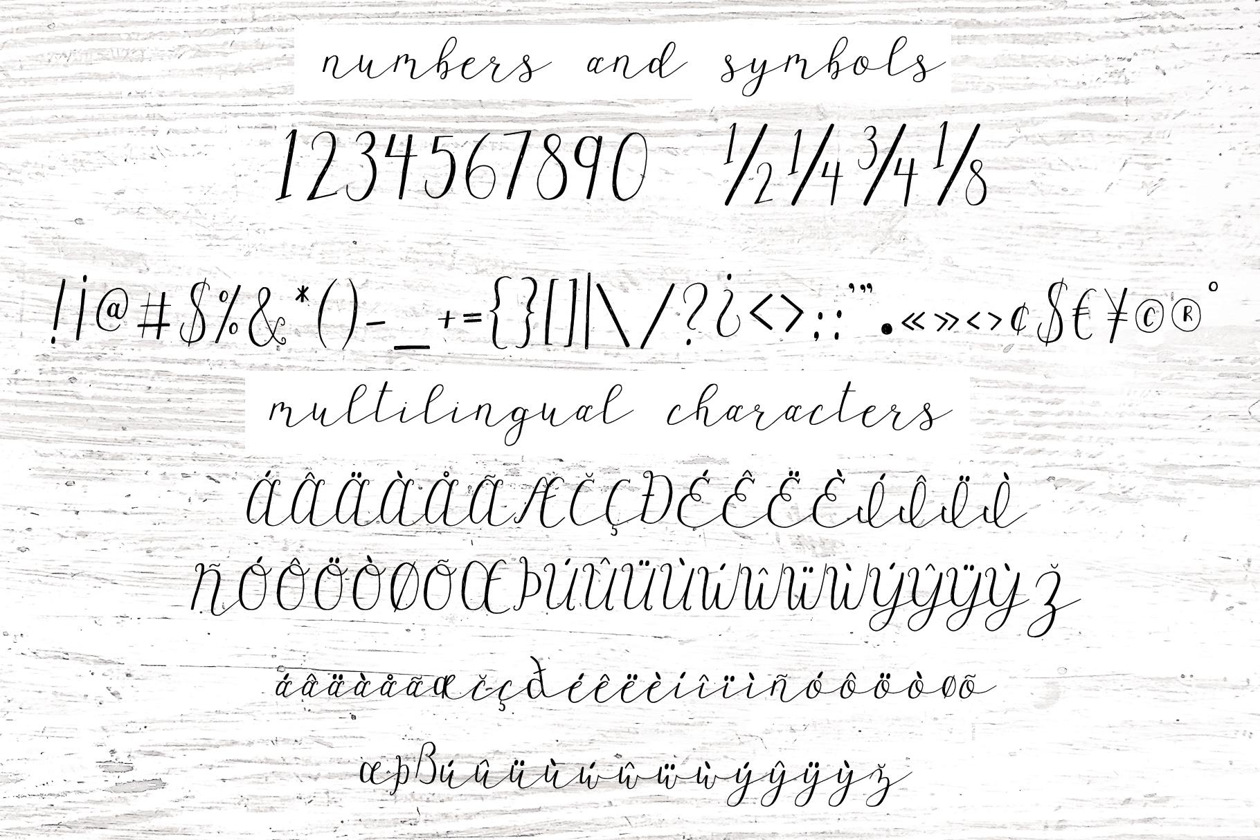Wagonwheel Delicate Handwritten Script Font example image 8