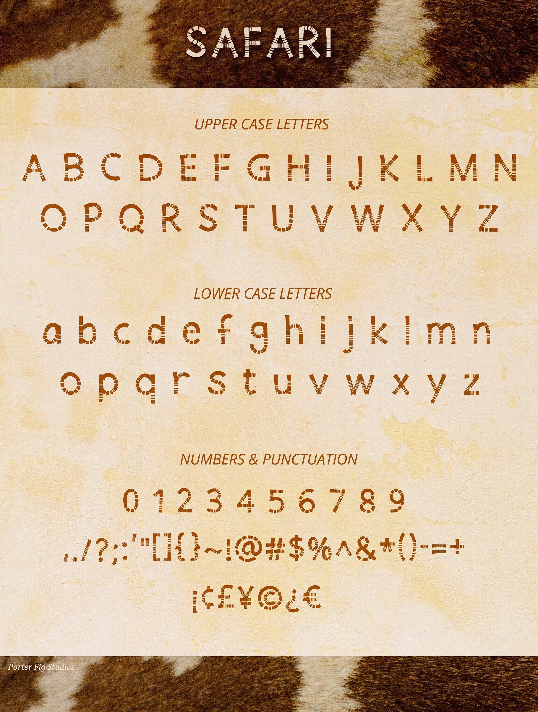 Safari Playful Display Font Typeface example image 2