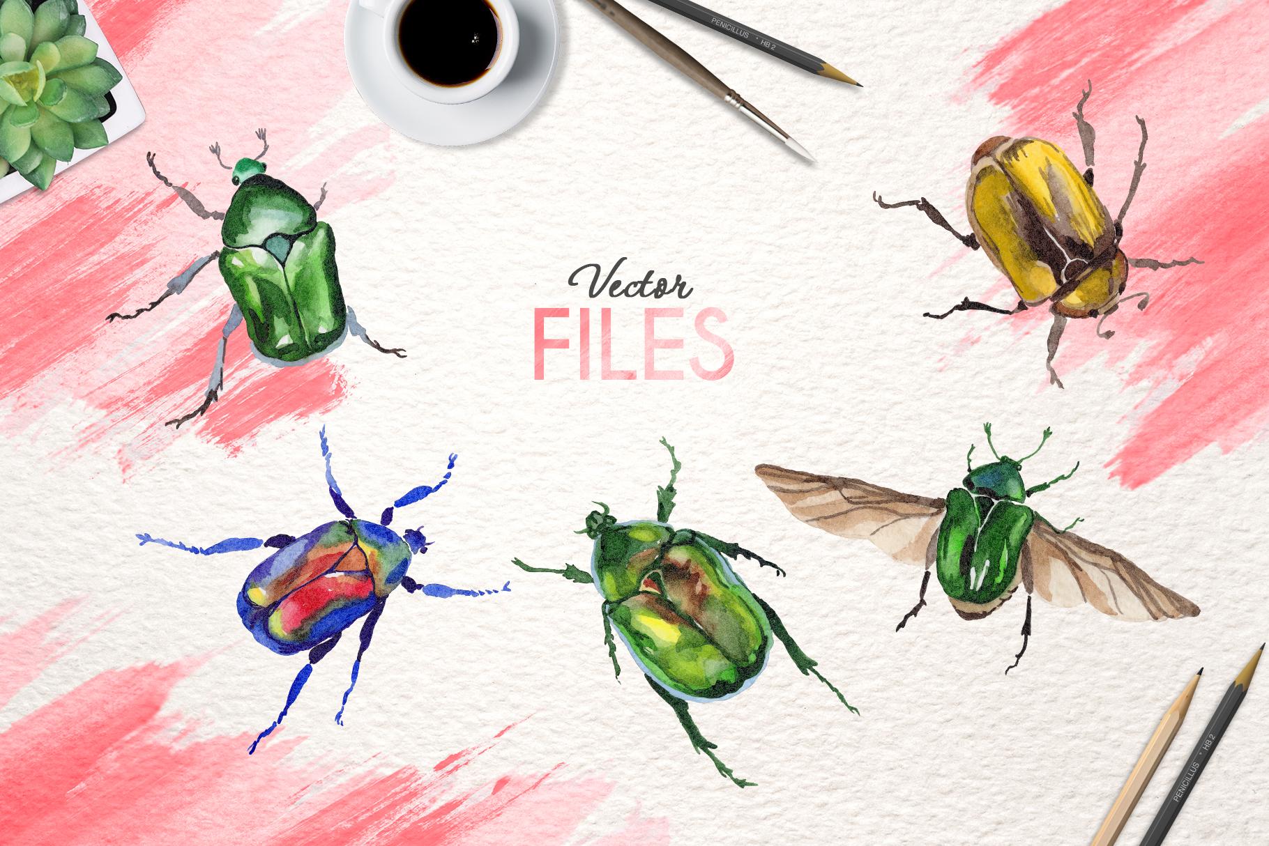 Beetle Cetoniinae,Flower Watercolor png example image 6