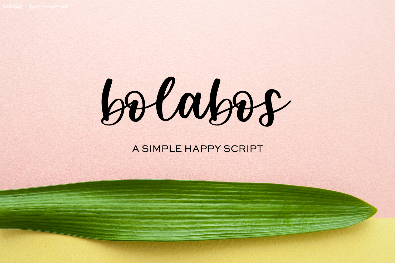 Bolabos Script Font example image 1