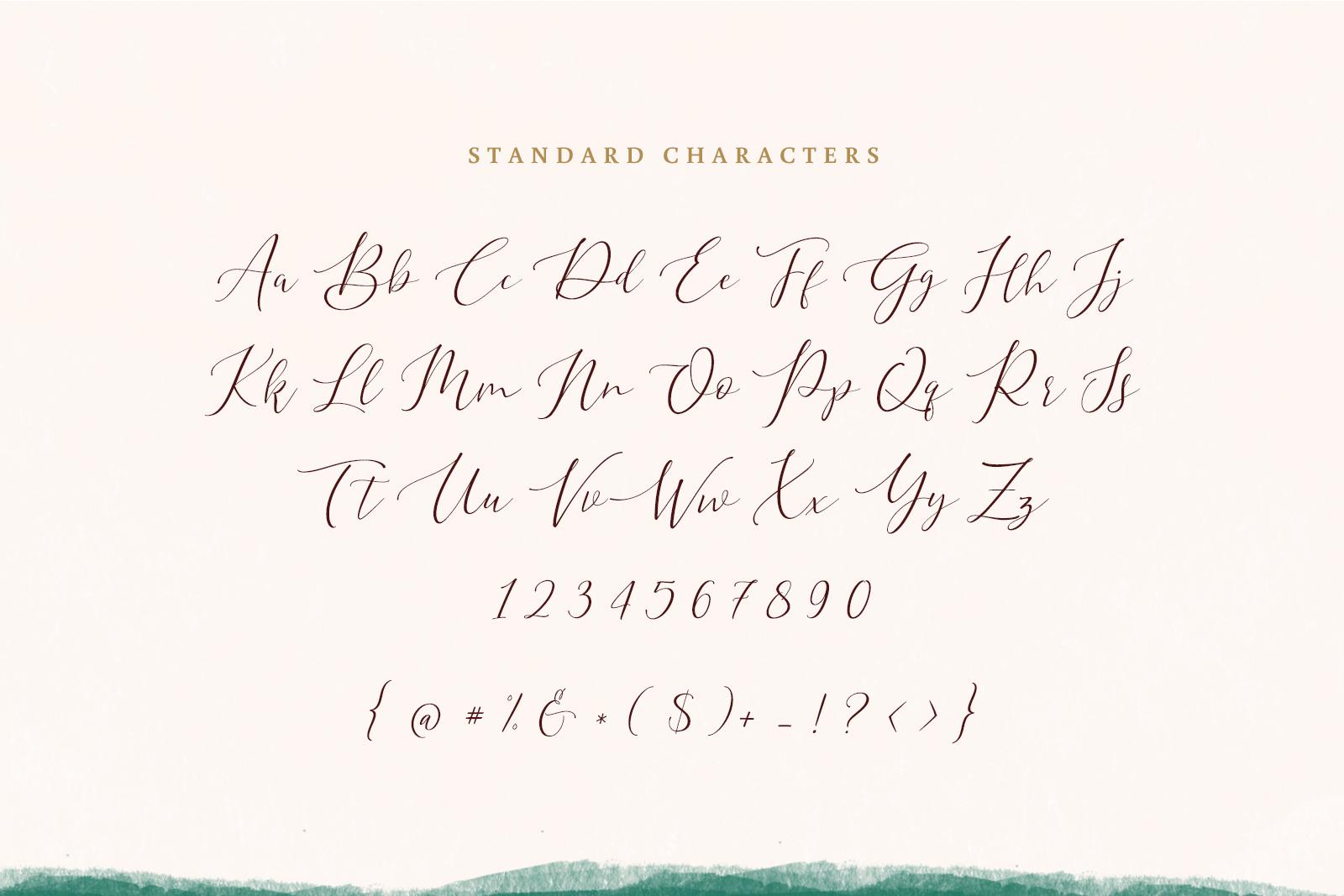 Hyldae Script Font example image 8