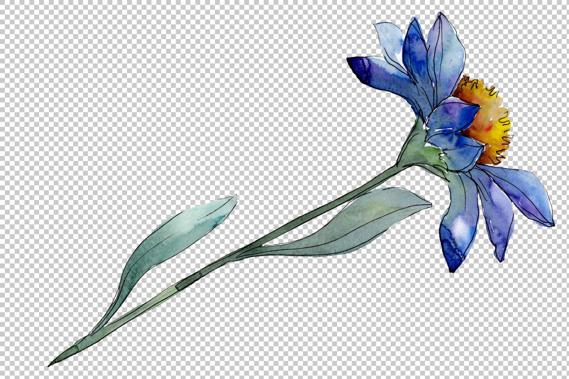 Bouquet blue of asters and daisies watercolor png example image 5