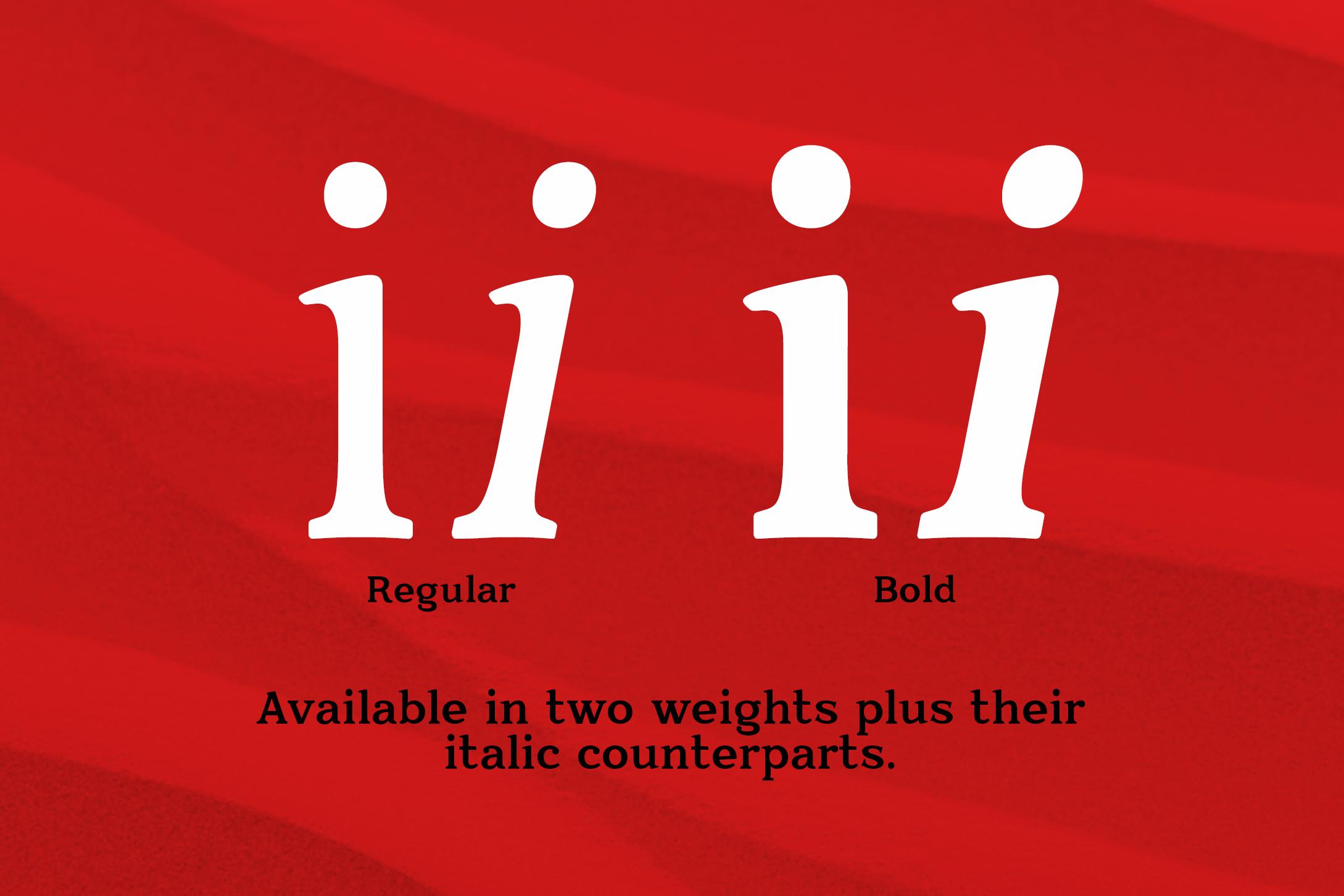 Quantik Elegant Contemporary Serif example image 4