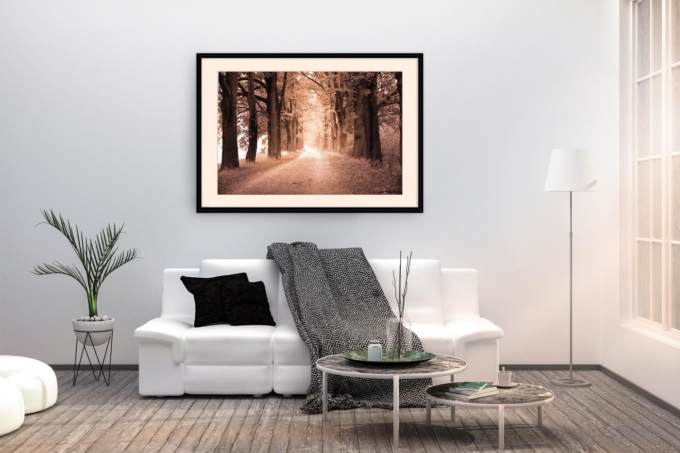 Nature photo, landscape photo, autumn alley photo, example image 5