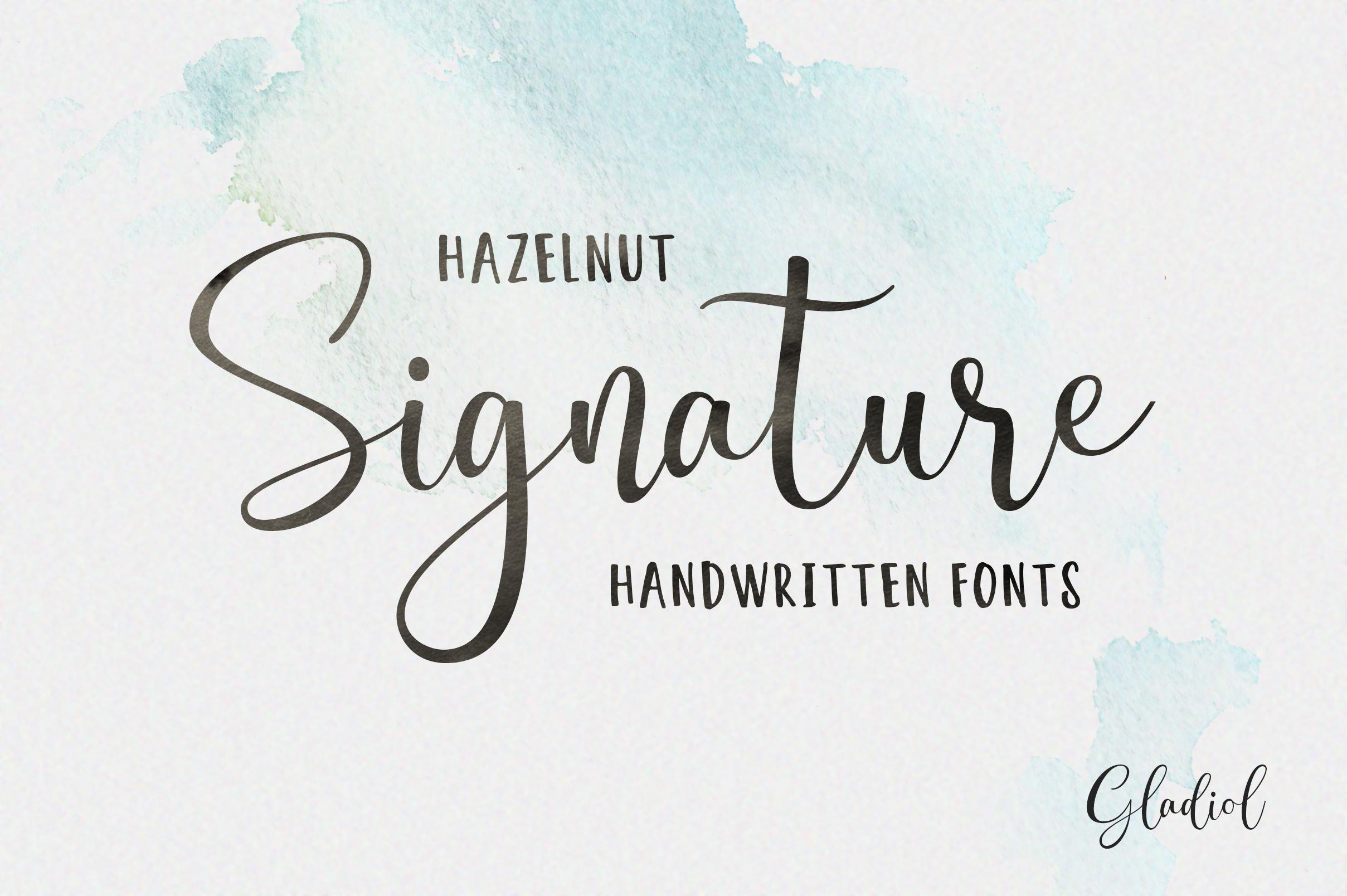 Gladiol Haze Script | Duo Font example image 5