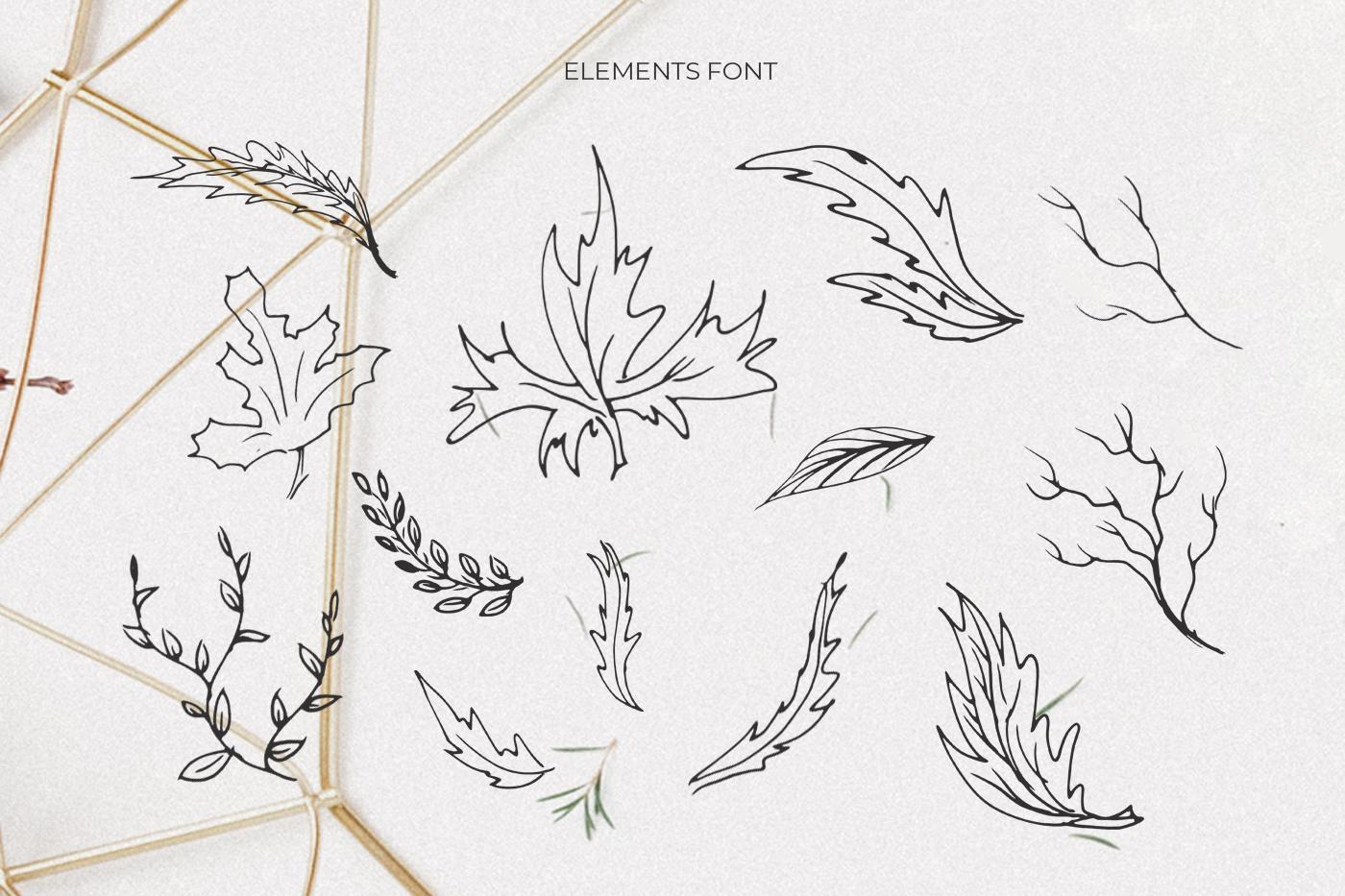 Geranium Font example image 5