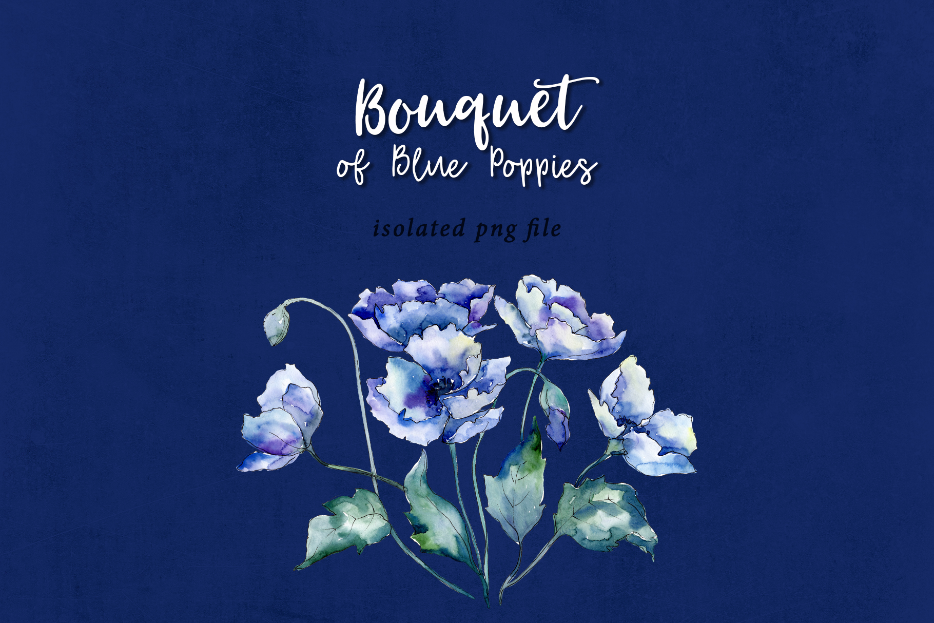 Bouquet of blue poppies PNG watercolor set example image 9