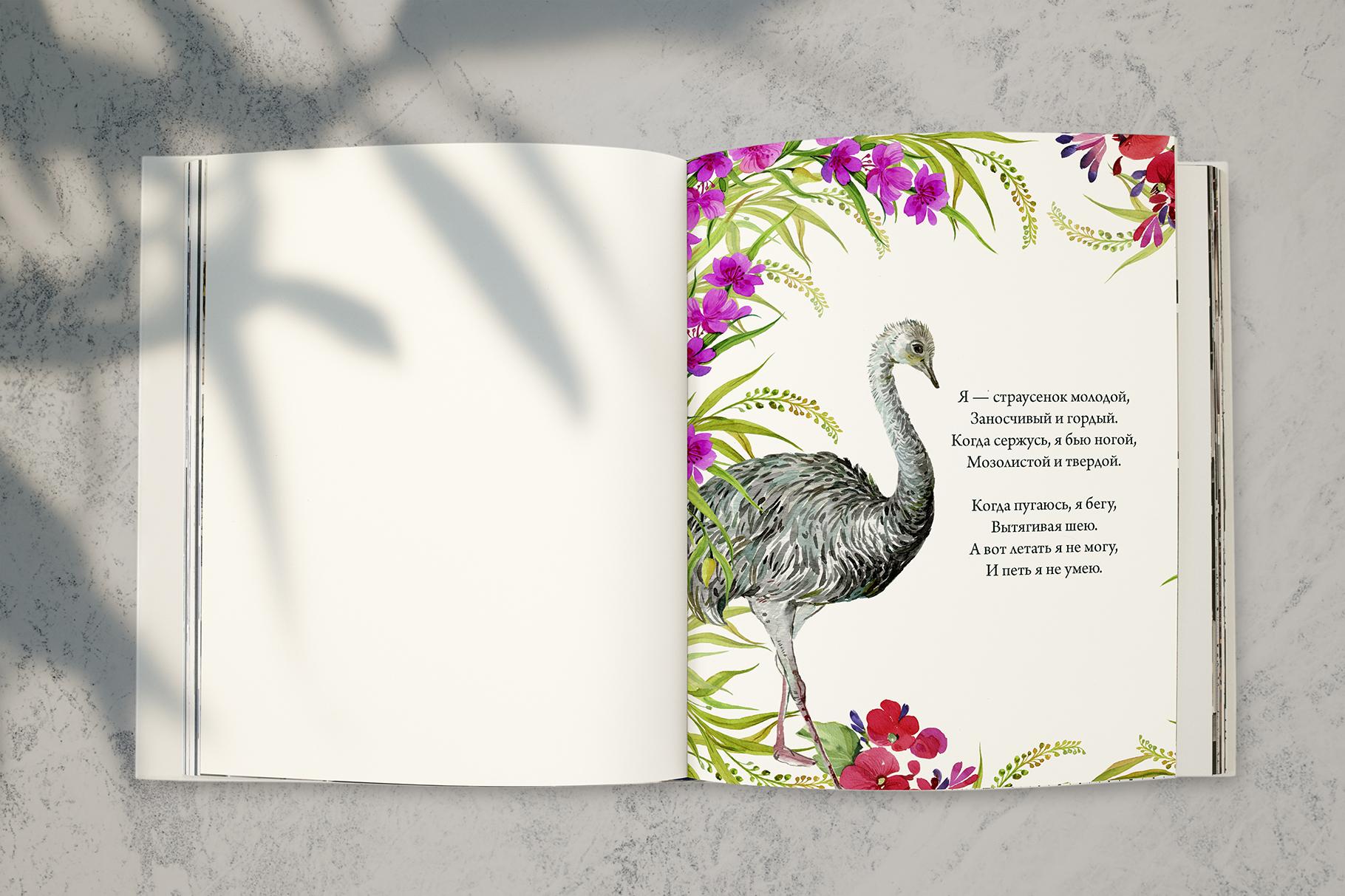 Animals Australia Watercolor example image 7
