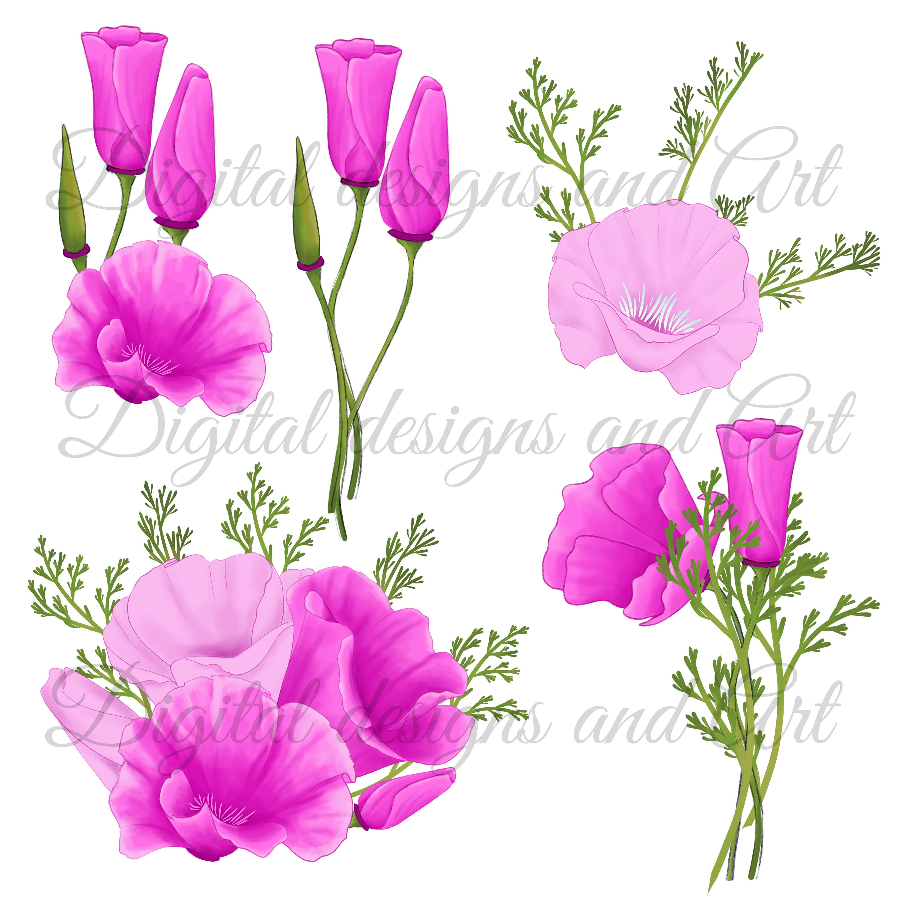 Poppy clipart example image 3