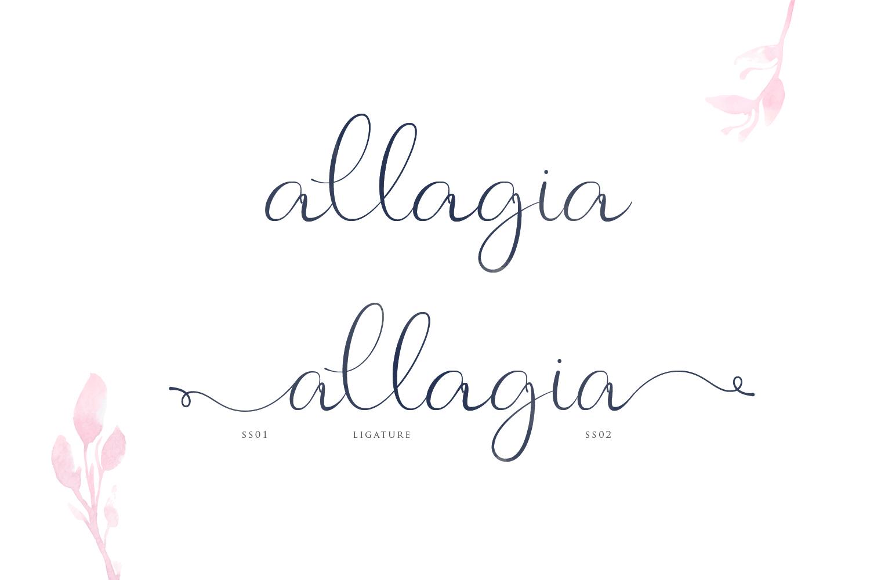 Allagia example image 4
