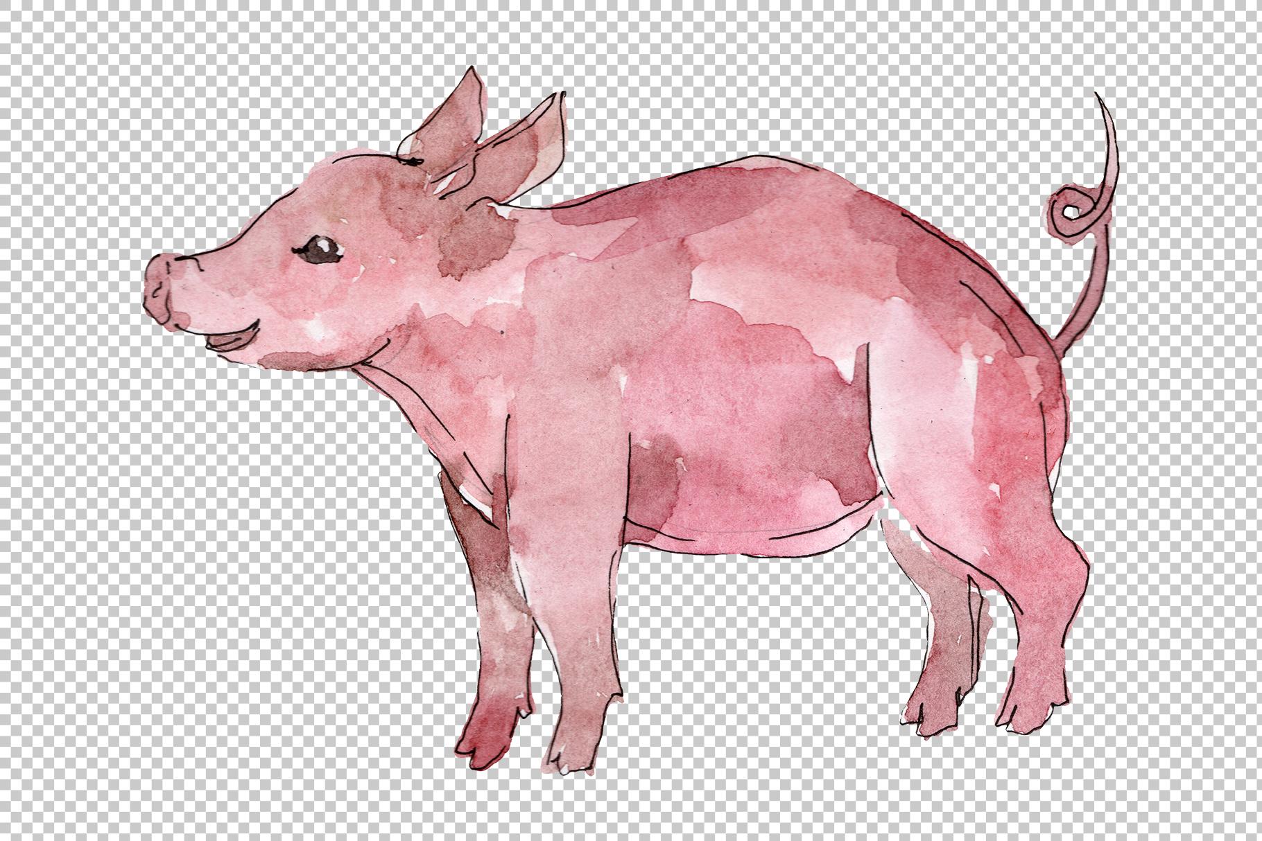 Farm animals pig boar Watercolor png example image 6