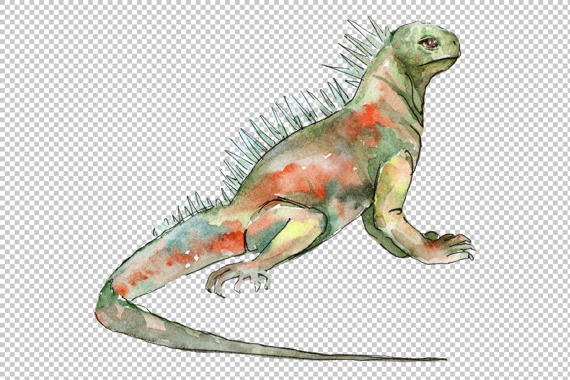 4 iguanas Watercolor png example image 4