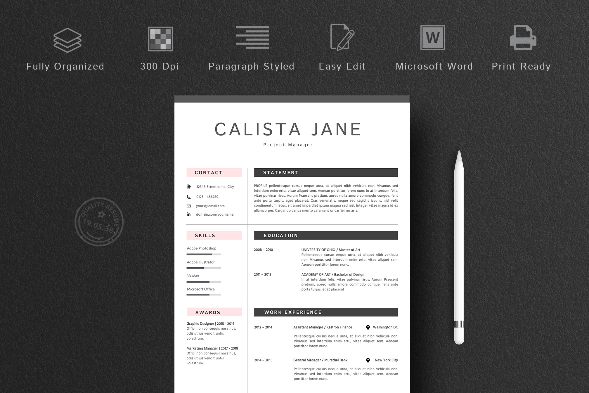 Resume Template 2 Pages example image 2