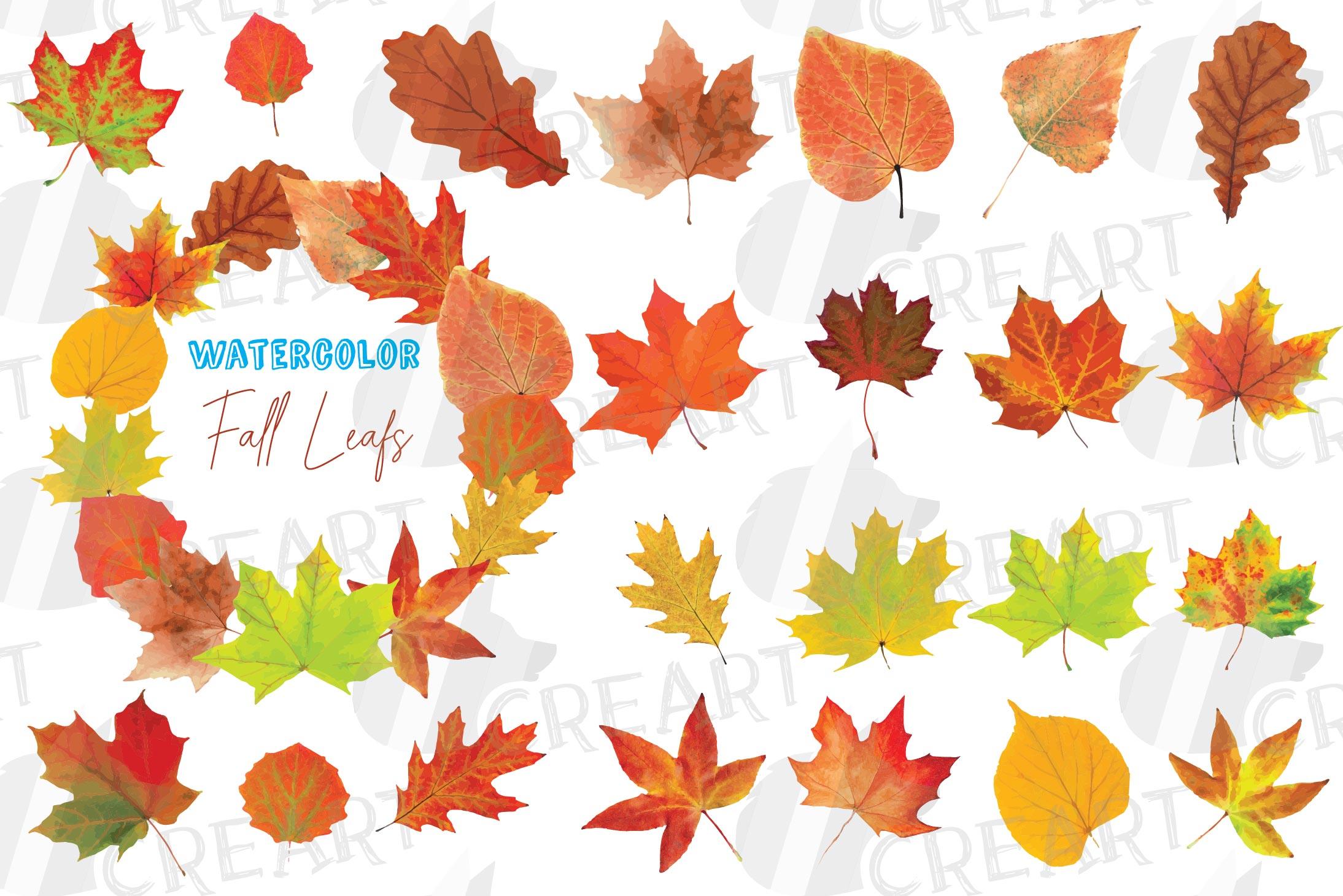 - Autumn Leaves Decor Clip Art. Printable Watercolor Fall Leaf